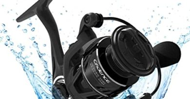 Top 10 Best Saltwater Spinning Reels for the Money in 2020 Reviews